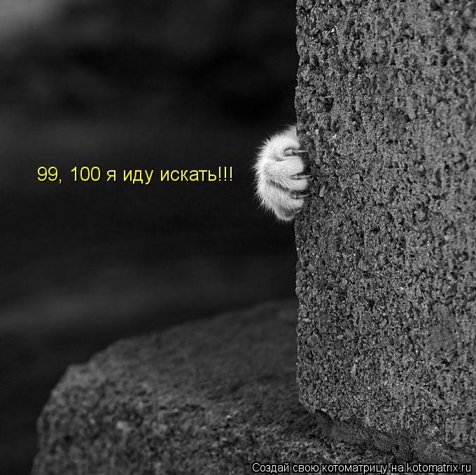 Котоматрица: 99, 100 я иду искать!!!