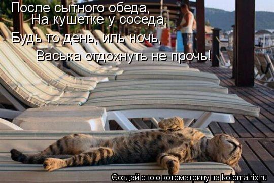 Котоматрица: После сытного обеда, На кушетке у соседа, Будь то день, иль ночь, Васька отдохнуть не прочь!