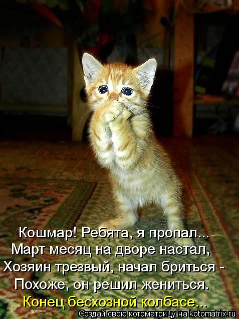 http://kotomatrix.ru/images/lolz/2012/03/08/1132900.jpg
