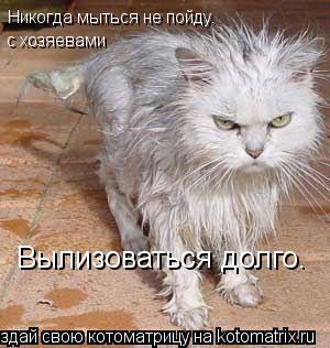 Котоматрица: Никогда мыться не пойду. с хозяевами Вылизоваться долго.