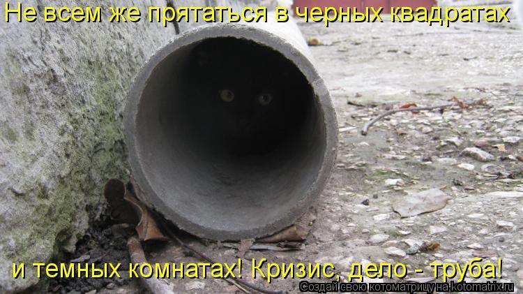 Котоматрица: Не всем же прятаться в черных квадратах и темных комнатах! Кризис, дело - труба!