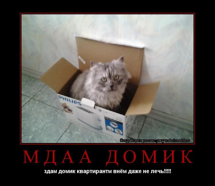 Котоматрица: Мдаа домик здам домик квартирантм внём даже не лечь!!!!!