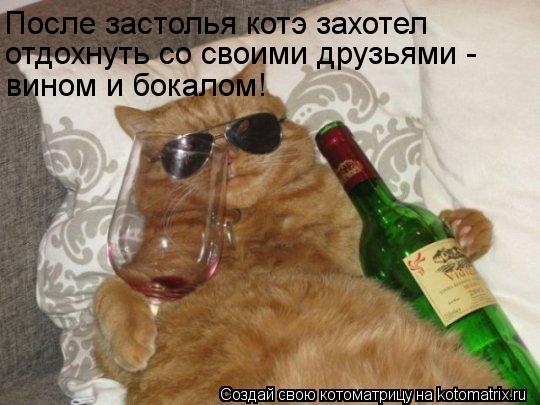 Котоматрица: поёт наш певец! После застолья котэ захотел отдохнуть со своими друзьями - вином и бокалом!