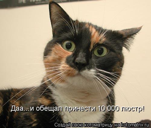 Котоматрица: Даа...и обещал принести 10 000 люстр!