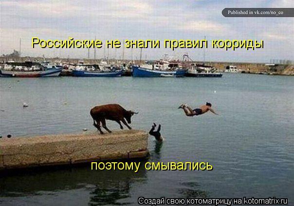 Котоматрица: Российские не знали правил корриды поэтому смывались