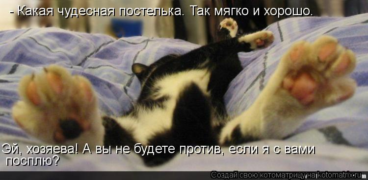 Котоматрица: - Какая чудесная постелька. Так мягко и хорошо.  Эй, хозяева! А вы не будете против, если я с вами посплю?