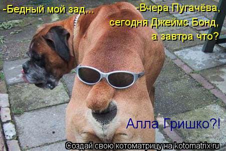 Котоматрица: -Бедный мой зад... -Вчера Пугачёва, сегодня Джеймс Бонд, а завтра что? Алла Гришко?!