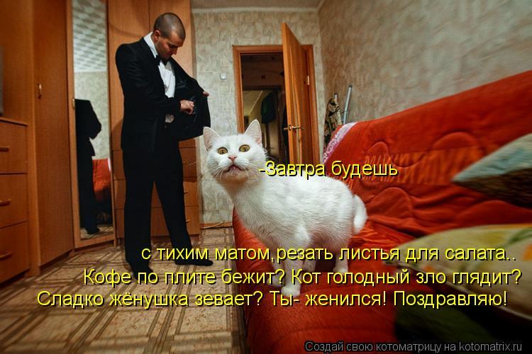 http://kotomatrix.ru/images/lolz/2012/03/09/1133243.jpg