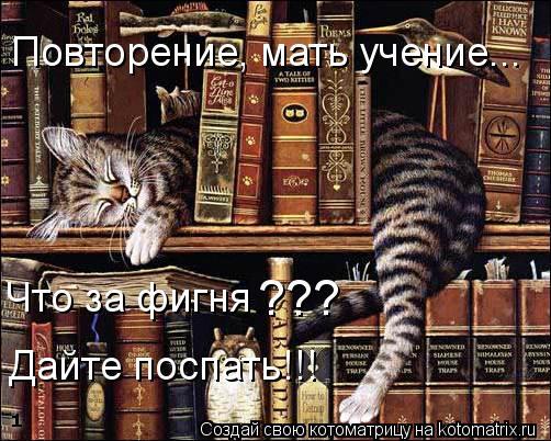 Котоматрица: Повторение, мать учение... Что за фигня дайте поспать!!! Что за фигня                                   дайте поспать!!! ??? Дайте поспать!!!