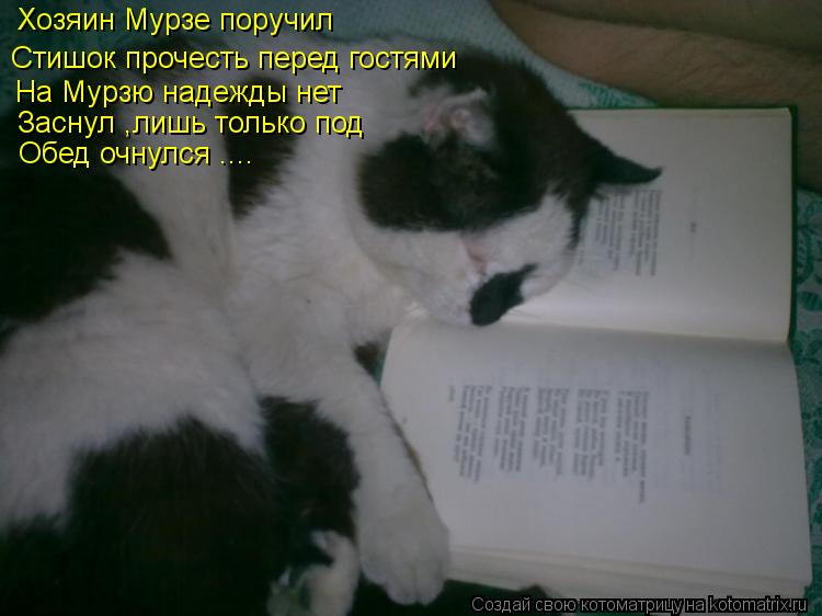 Котоматрица: Хозяин Мурзе поручил Стишок прочесть перед гостями  На Мурзю надежды нет  Заснул ,лишь только под Обед очнулся ....