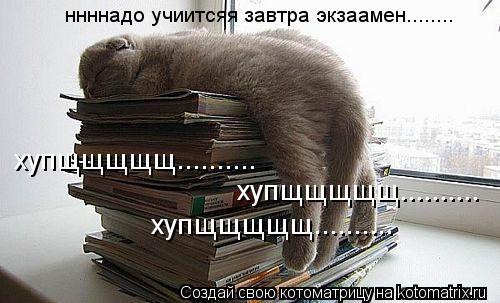 Котоматрица: ннннадо учиитсяя завтра экзаамен........  хупщщщщщ.......... хупщщщщщ.......... хупщщщщщ..........