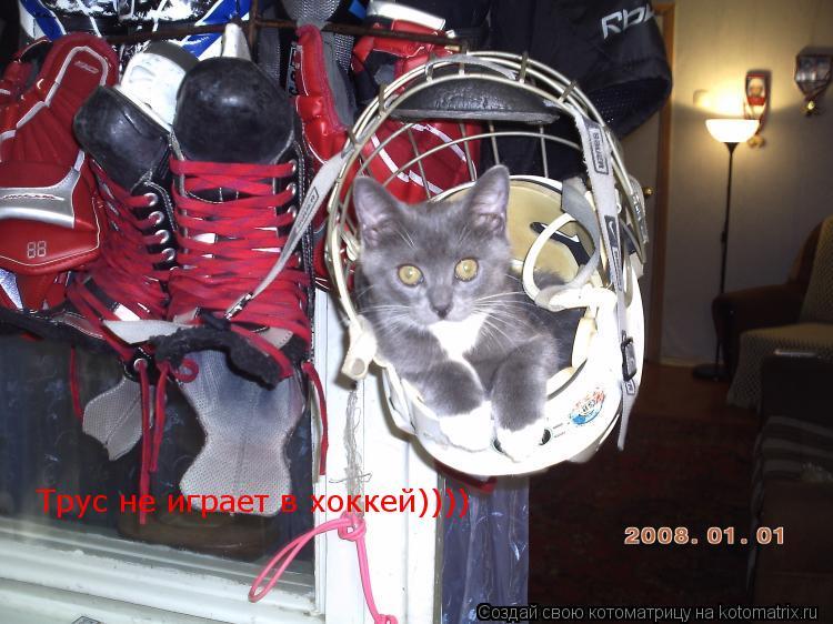 Котоматрица: Трус не играет в хоккей))))