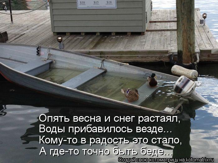 Котоматрица: Опять весна и снег растаял, Воды прибавилось везде... Кому-то в радость это стало, А где-то точно быть беде...