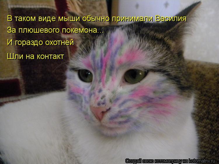Котоматрица - В таком виде мыши обычно принимали Василия За плюшевого покемона... И