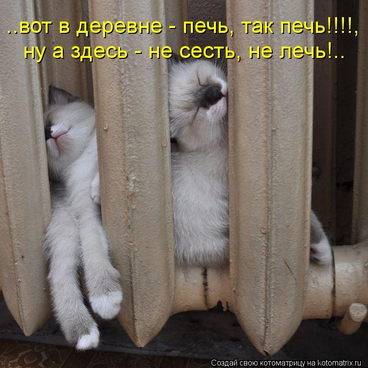 Котоматрица: ..вот в деревне - печь, так печь!!!!, ну а здесь - не сесть, не лечь!..