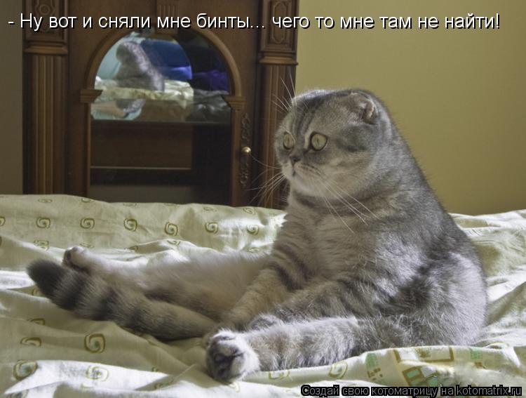 Котоматрица: - Ну вот и сняли мне бинты... чего то мне там не найти!