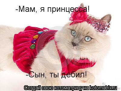 Котоматрица: -Мам, я принцесса! -Сын, ты дебил!