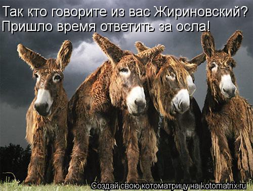 Котоматрица: Так кто говорите из вас Жириновский? Пришло время ответить за осла!