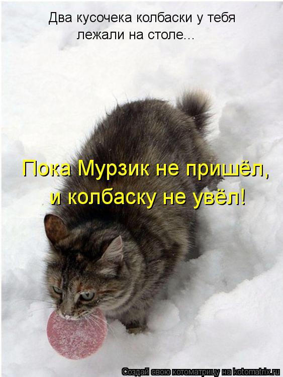 Котоматрица: Два кусочека колбаски у тебя лежали на столе... Пока Мурзик не пришёл, и колбаску не увёл!