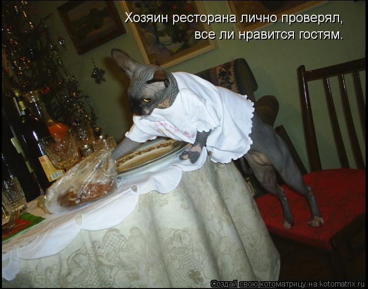 Котоматрица: Хозяин ресторана лично проверял, все ли нравится гостям.