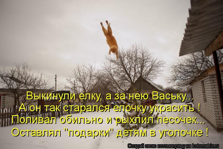 """Котоматрица: Выкинули елку, а за нею Ваську... А он так старался елочку украсить ! Поливал обильно и рыхлил песочек... Оставлял """"подарки"""" детям в уголочке !"""