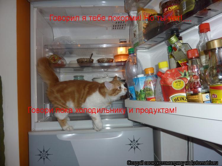 Котоматрица: Говорил я тебе покорми! Но ты нет!,,,, Говори пока холодильнику и продуктам!