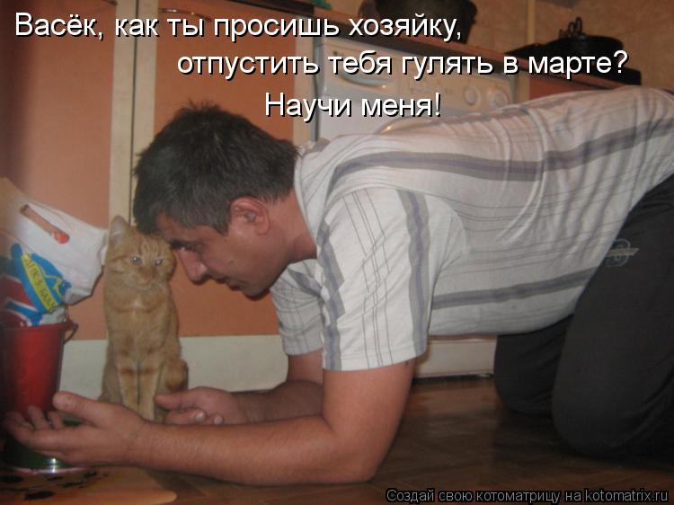 Котоматрица: Васёк, как ты просишь хозяйку,  отпустить тебя гулять в марте? Научи меня!