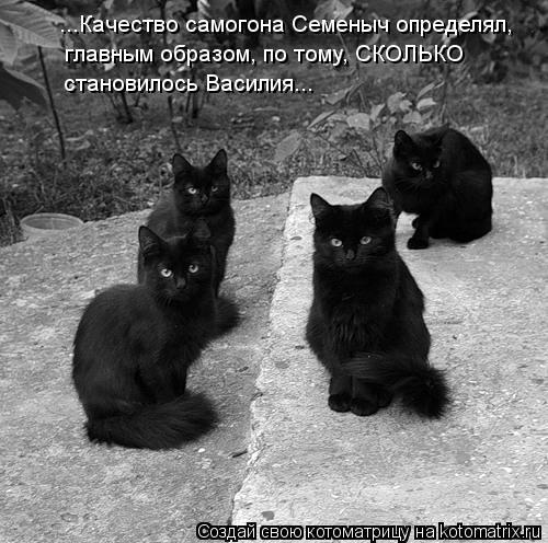 Котоматрица: ...Качество самогона Семеныч определял,  главным образом, по тому, СКОЛЬКО  становилось Василия...