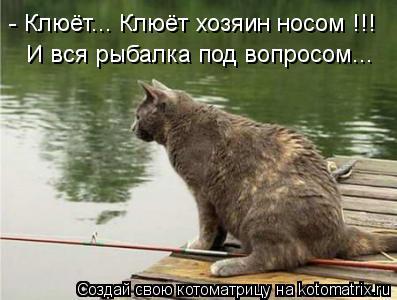 Котоматрица: - Клюёт... Клюёт хозяин носом !!! И вся рыбалка под вопросом...