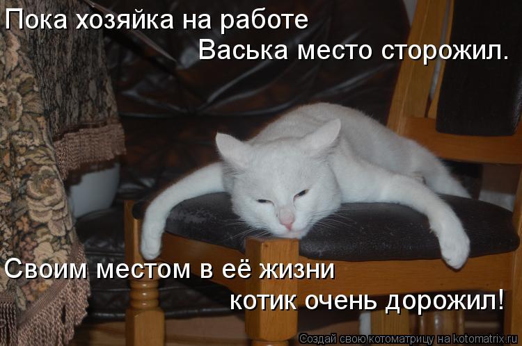 Котоматрица - Пока хозяйка на работе Васька место сторожил. Своим местом в её жизни