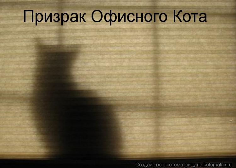 Котоматрица - Призрак Офисного Кота