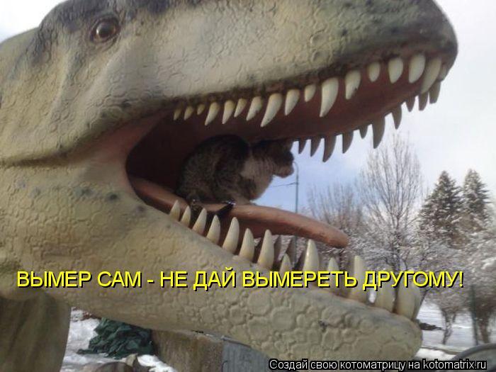 Котоматрица - ВЫМЕР САМ - НЕ ДАЙ ВЫМЕРЕТЬ ДРУГОМУ!