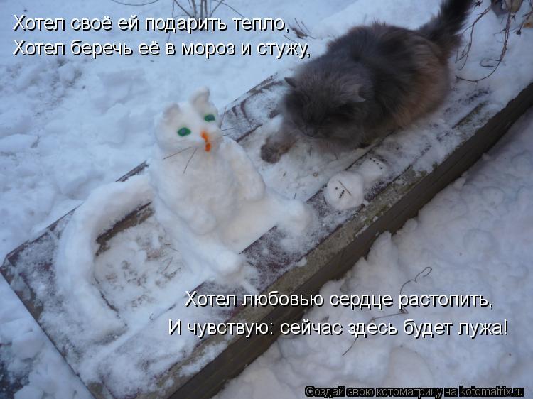 Котоматрица: Хотел своё ей подарить тепло, Хотел беречь её в мороз и стужу, Хотел любовью сердце растопить, И чувствую: сейчас здесь будет лужа!