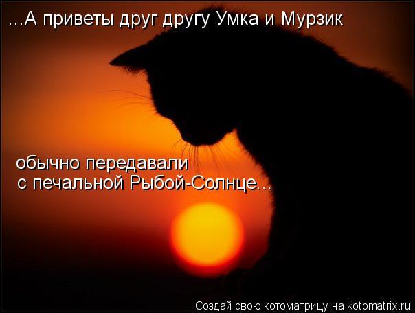 Котоматрица: ...А приветы друг другу Умка и Мурзик с печальной Рыбой-Солнце... обычно передавали