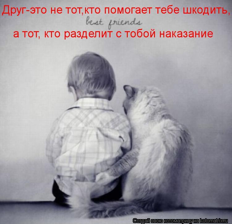 Котоматрица: Друг-это не тот,кто помогает тебе шкодить, а тот, кто разделит с тобой наказание