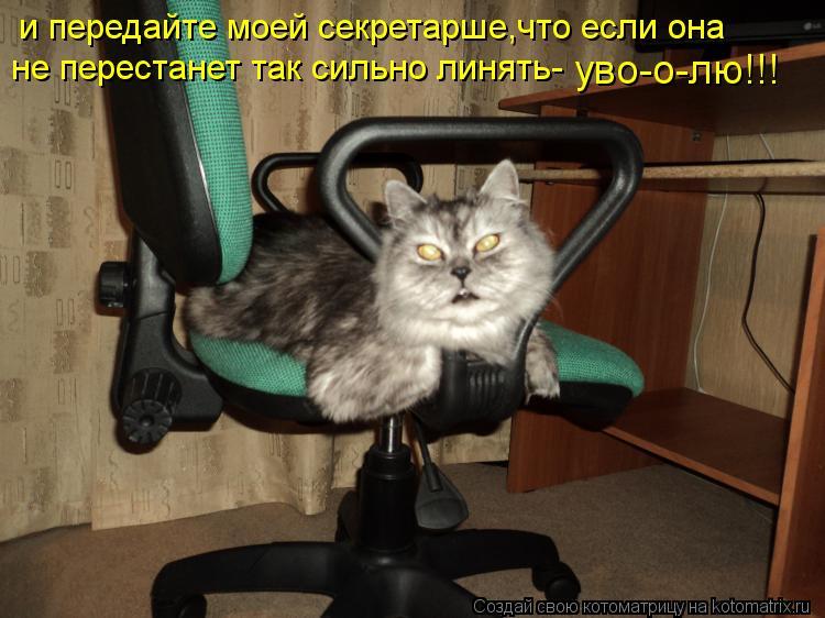 Котоматрица: и передайте моей секретарше,что если она не перестанет так сильно линять- уво-о-лю!!!
