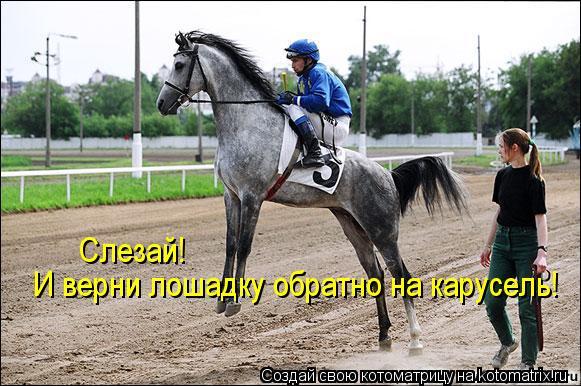 Котоматрица: И верни лошадку обратно на карусель! Слезай!