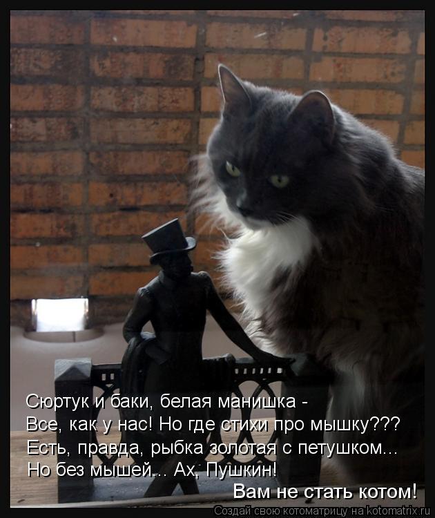 Котоматрица: Сюртук и баки, белая манишка - Все, как у нас! Но где стихи про мышку??? Есть, правда, рыбка золотая с петушком... Но без мышей... Ах, Пушкин!  Вам не