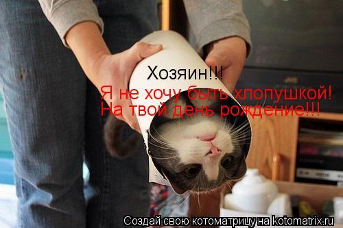 Котоматрица: Хозяин!!! Я не хочу быть хлопушкой! На твой день рождение!!!