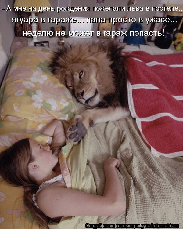 Котоматрица: - А мне на день рождения пожелали льва в постеле...  ягуара в гараже... папа просто в ужасе... неделю не может в гараж попасть!