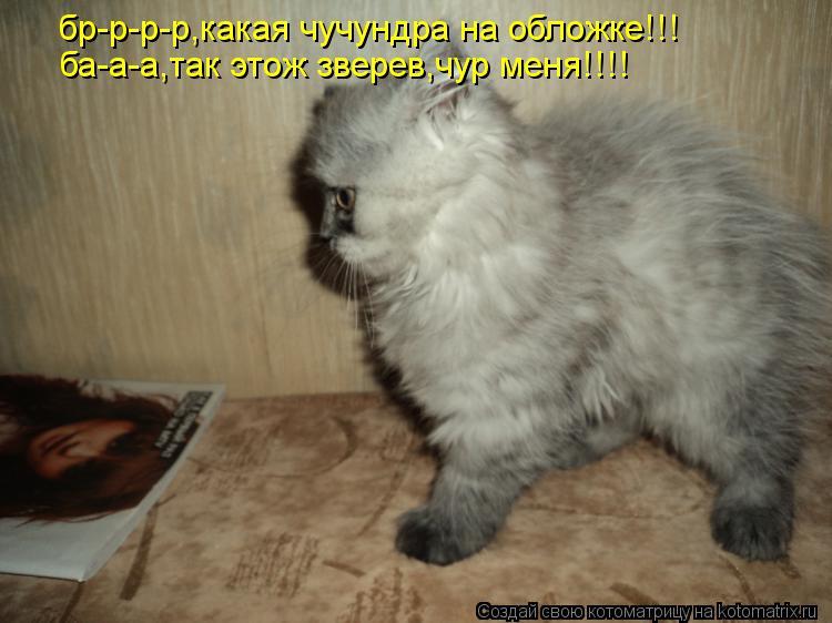 Котоматрица: бр-р-р-р,какая чучундра на обложке!!! ба-а-а,так этож зверев,чур меня!!!!