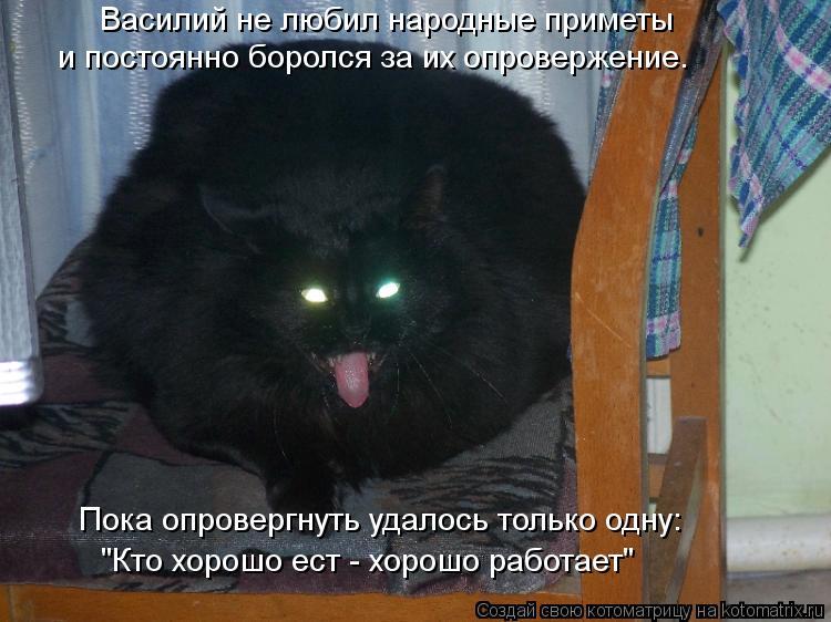 Котоматрица - Василий не любил народные приметы и постоянно боролся за их опровержен