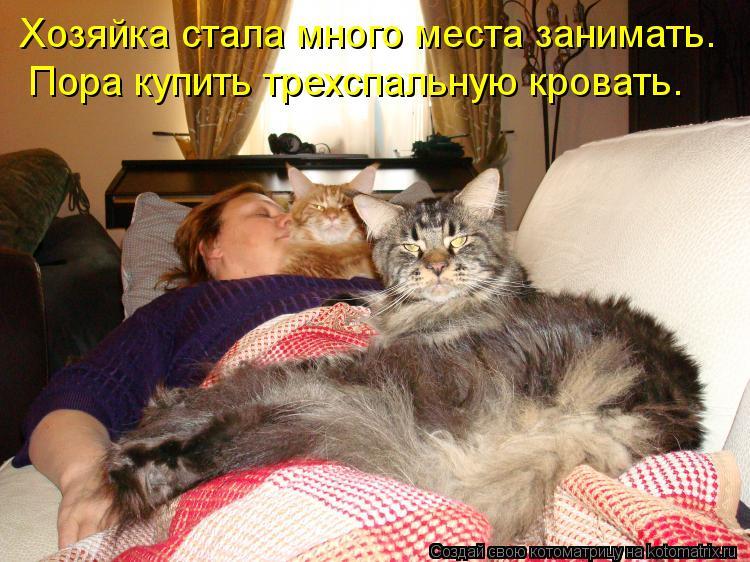 Котоматрица - Хозяйка стала много места занимать. Пора купить трехспальную кровать.