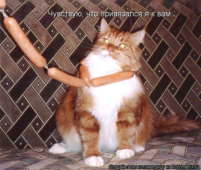 http://kotomatrix.ru/images/lolz/2012/03/18/1141478.jpg