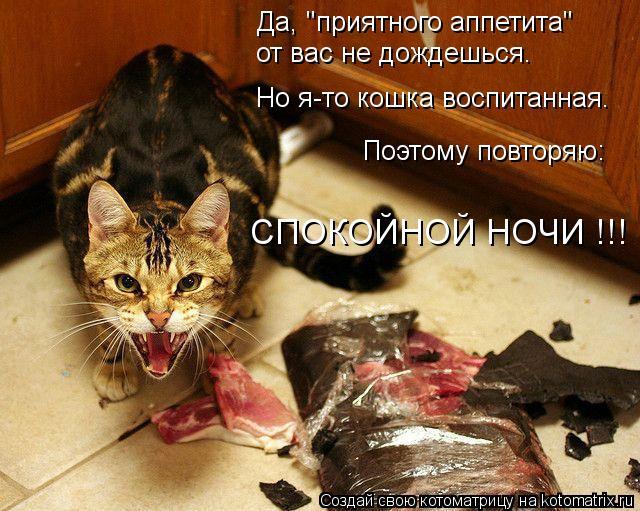 """Котоматрица - Да, """"приятного аппетита"""" от вас не дождешься. Но я-то кошка воспитанна"""