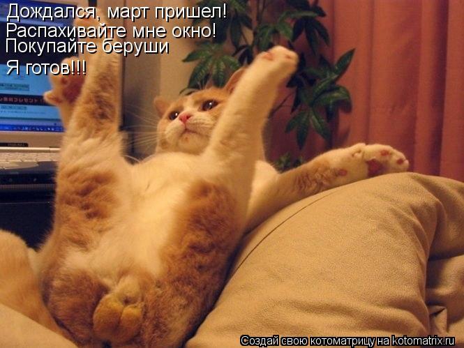 Котоматрица: Дождался, март пришел! Распахивайте мне окно! Покупайте беруши Я готов!!!