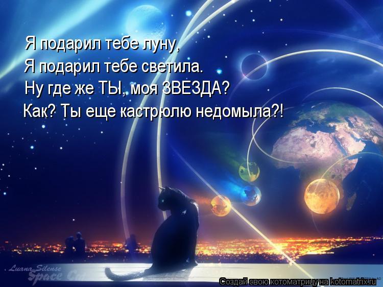 Котоматрица: Я подарил тебе луну,  Я подарил тебе светила. Ну где же ТЫ, моя ЗВЕЗДА? Как? Ты еще кастрюлю недомыла?!