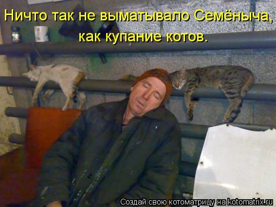 Котоматрица: Ничто так не выматывало Семёныча, как купание котов.
