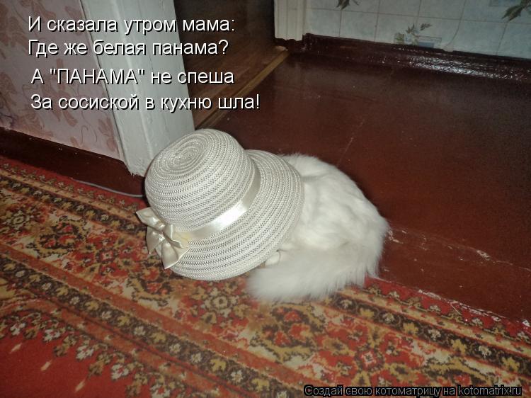http://kotomatrix.ru/images/lolz/2012/03/22/1145539.jpg