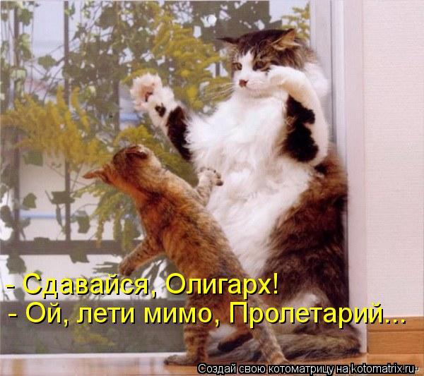 Котоматрица: - Ой, лети мимо, Пролетарий... - Сдавайся, Олигарх!